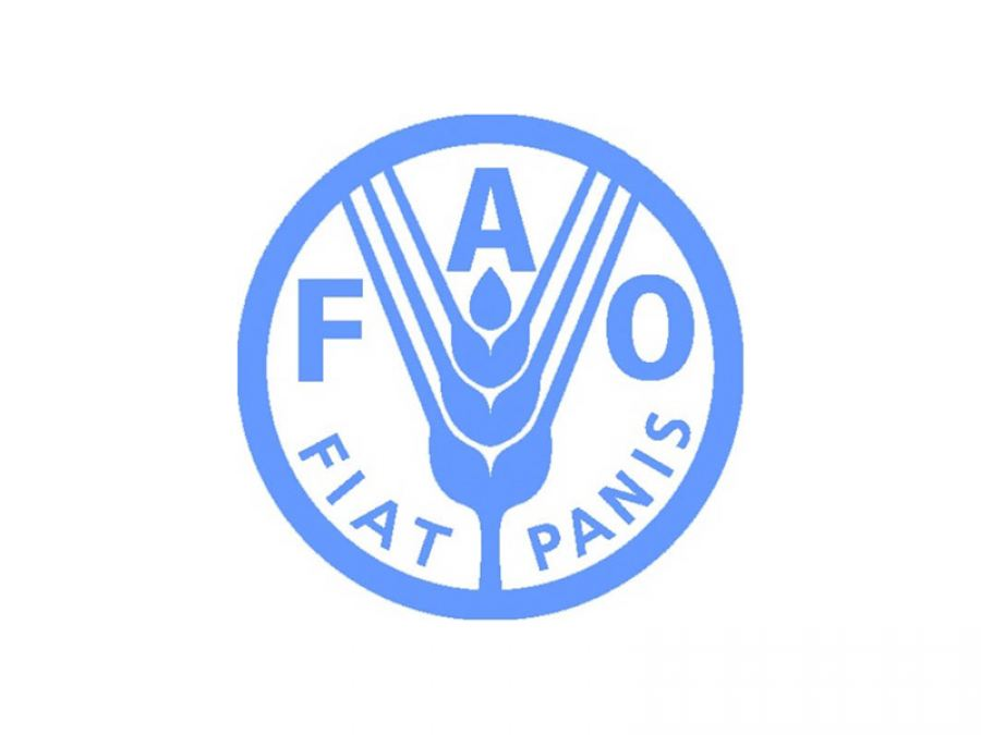 Pan-African Parliament (PAP) and FAO join hands to strengthen the Alliance for Food Security and Nutrition